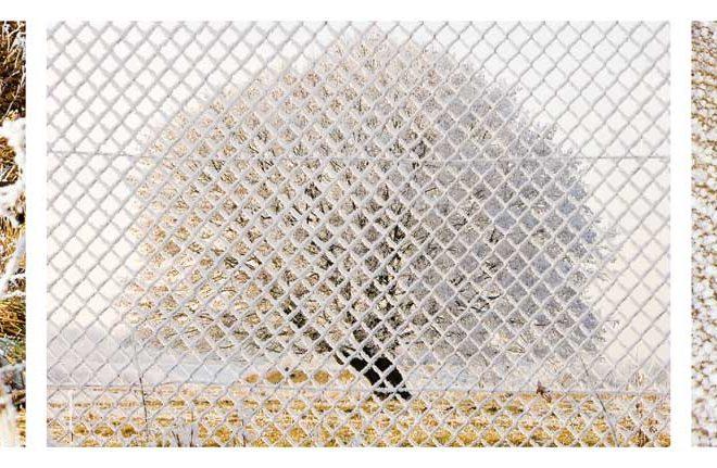 Echter Fotoabzug unter Acrylglas, 85 x 20,3 cm