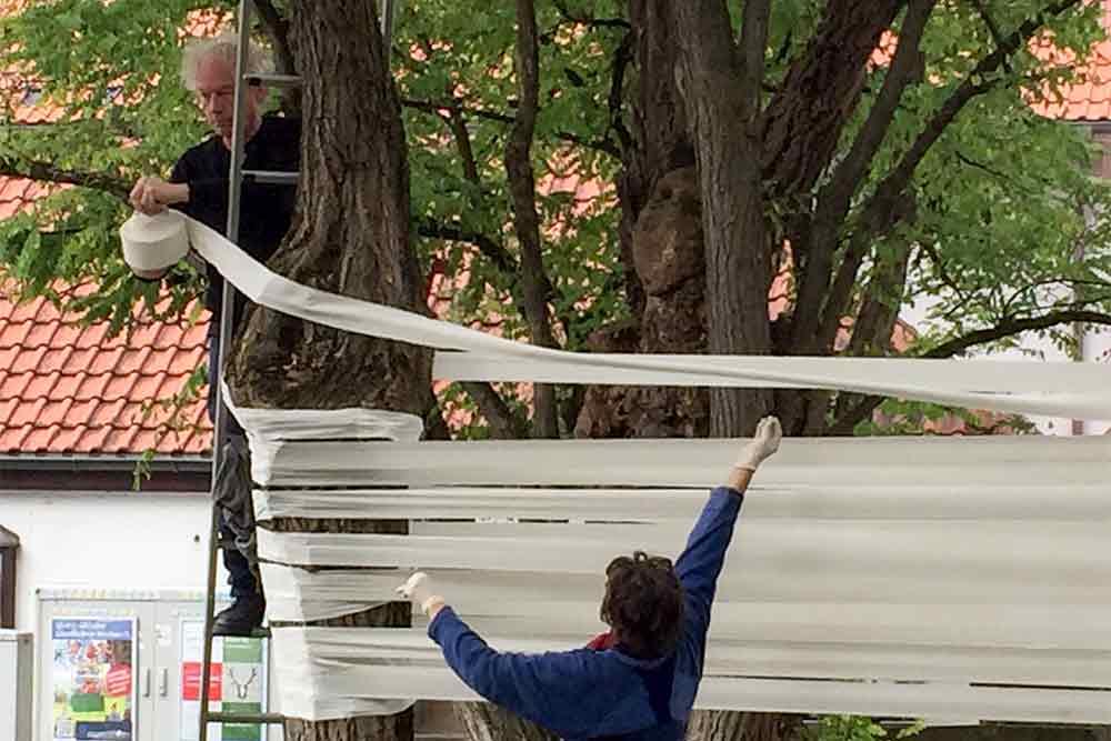 Freifrank im Baum bei der Installation auf dem Lichtkunstfestival 2016